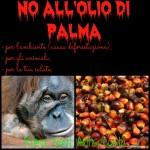 No all'olio di palma, boicottaggio a tutti i prodotti che lo contengono